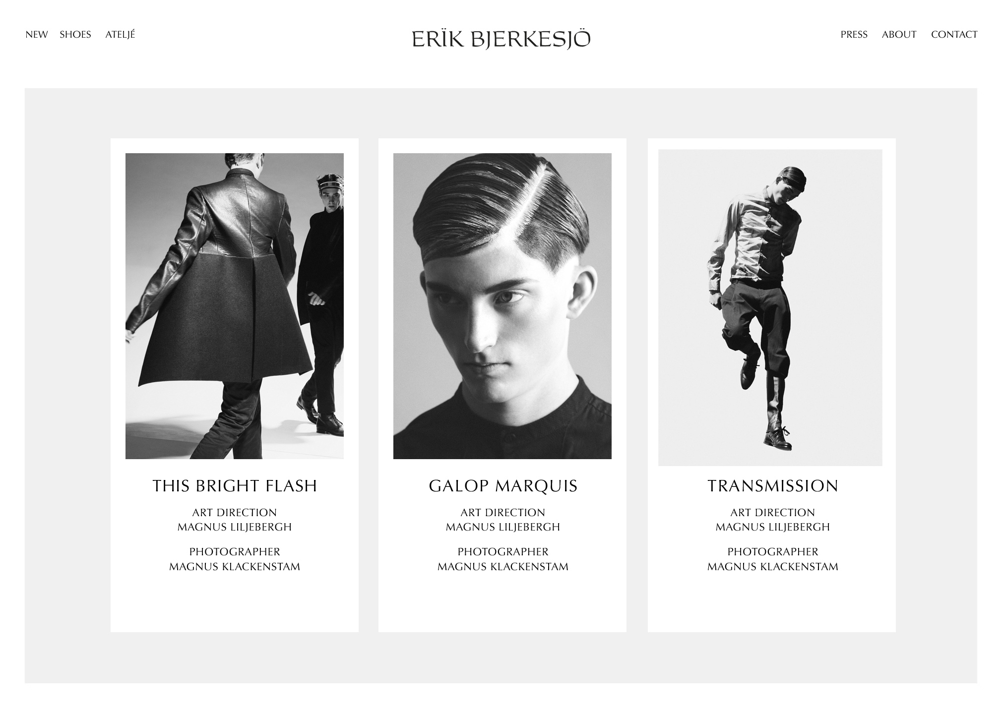 Erik Bjerkesjö – website